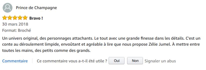 Avis Amazon 2